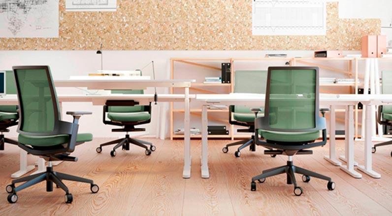 cómo elegir mejor silla despacho 2