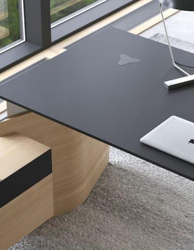 executive furniture MOVE interiors (06)